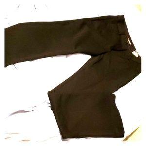 Express women's dress pants 2R
